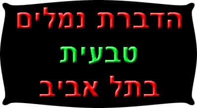 הדברת נמלים טבעית בתל אביב